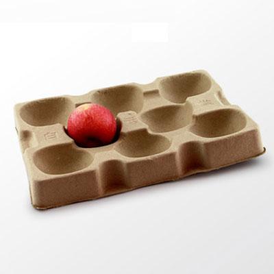 Friut tray